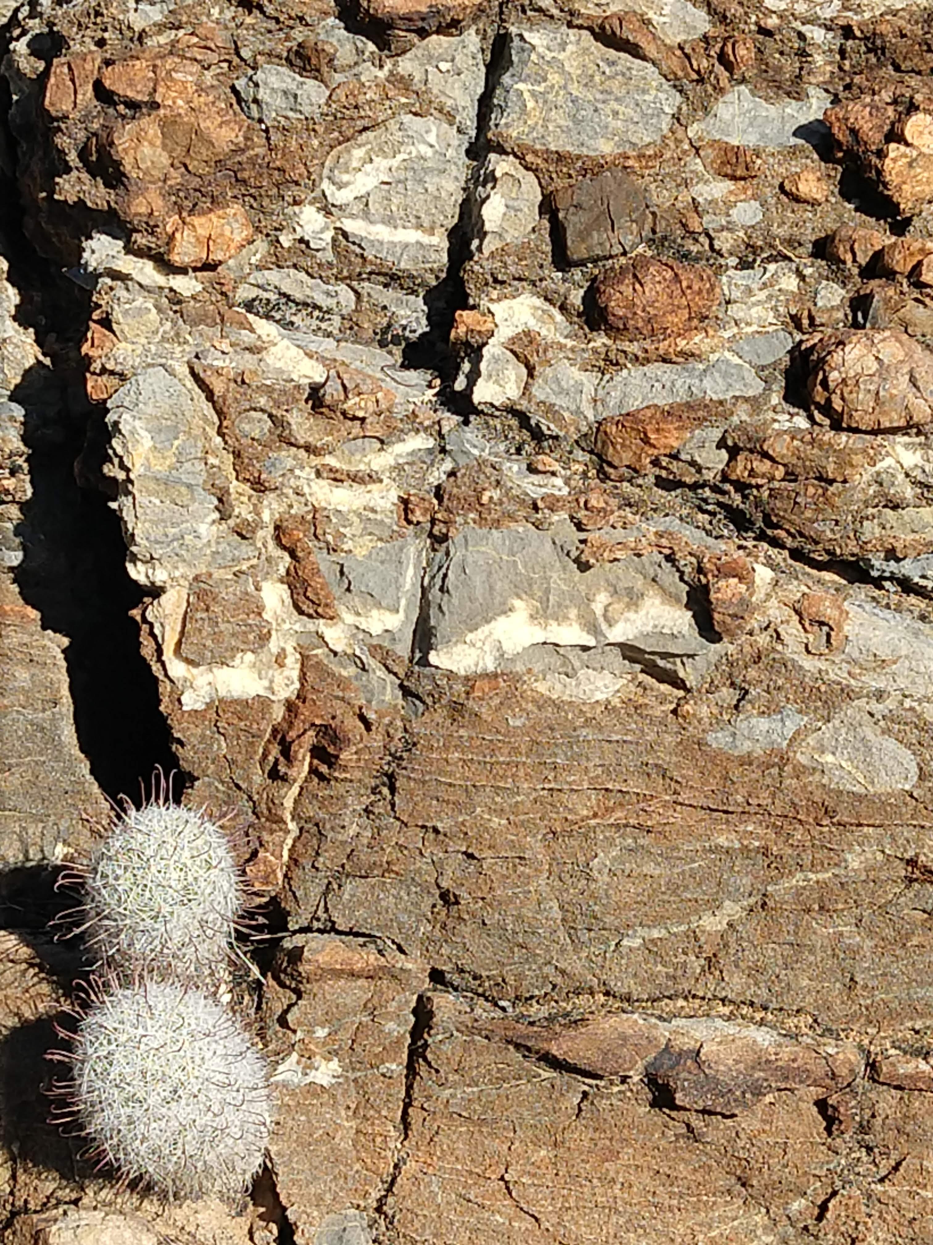 Sabino Canyon rock